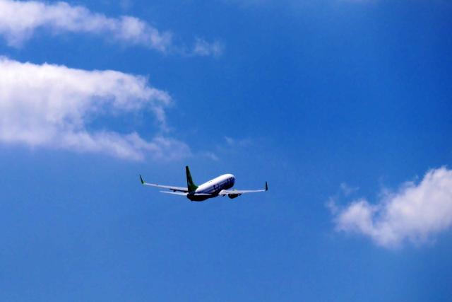 飛行機やホテルを自由に選択