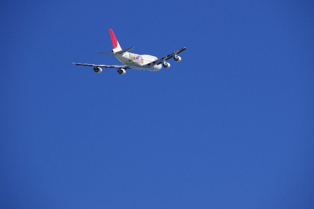 airplane4-jal