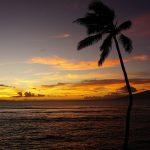 ハワイのクレジットカード事情、使用上の注意点や使える国際ブランド、おすすめのクレジットカード